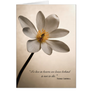 White Wildflower Thank You for Your Condolences Note Card