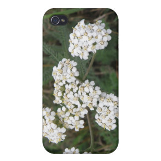 White Wildflowers  Case For The iPhone 4