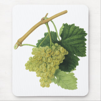 White Wine Grapes on the Vine, Vintage Food Fruit Mouse Pad