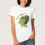 White Wine Grapes on the Vine, Vintage Food Fruit T-shirts