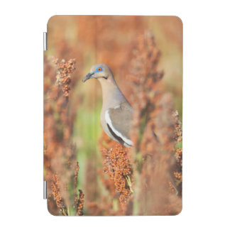 White-Winged Dove (Zenaida Asiatica) Perched iPad Mini Cover