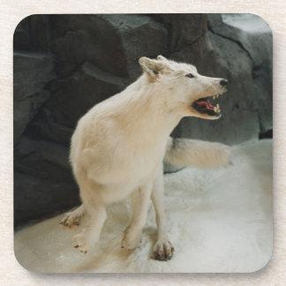 White Wolf Coasters