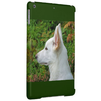 White wolf in the green