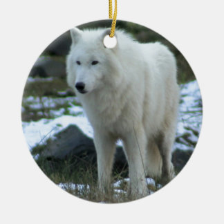 White Wolf in Winter Christmas Ornament