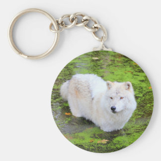 White Wolf Keychain