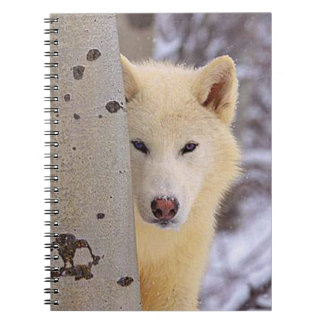 White Wolf Notebooks