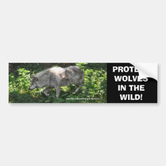 WHITE WOLF Wildlife Conservation Bumper sticker