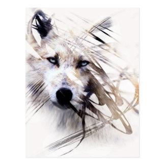 White Wolf wolves animal art Postcard