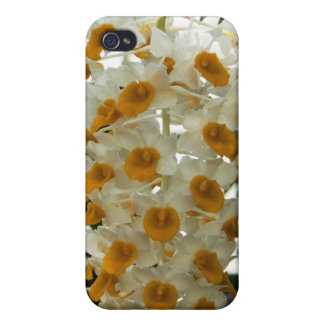 White yellow orchid iPhone 4 4S Case Cover For iPhone 4