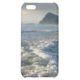 Whitecap Waters iPhone 5C Cases