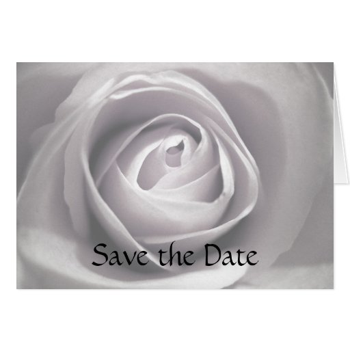 Whiteness, Save the Date Card