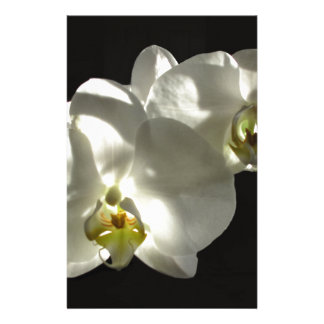 whiteorchids stationery