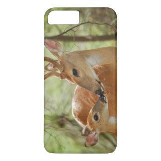 Whitetail Buck And Fawn Bonding iPhone 8 Plus/7 Plus Case