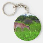 Whitetail Deer Basic Round Button Key Ring