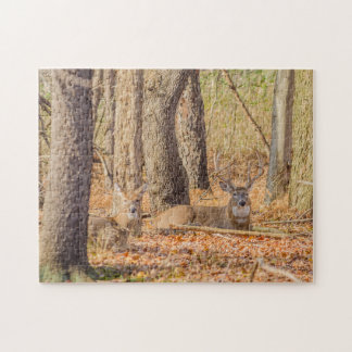 Whitetail Deer Buck And Doe Jigsaw Puzzle
