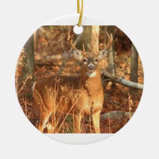 Whitetail Deer Buck Christmas Ornament