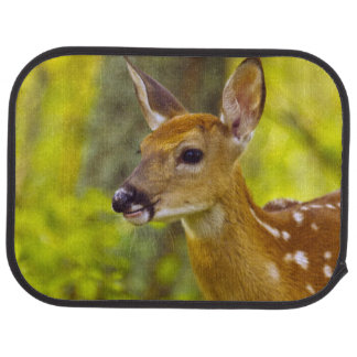 Whitetail deer fawn in Whitefish, Montana, USA Car Mat