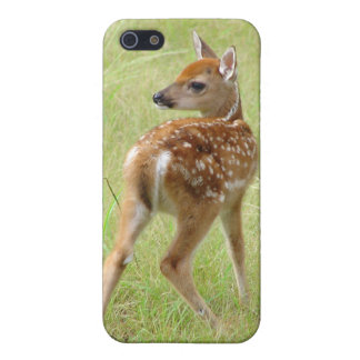 Whitetail Deer Fawn Matte Finish iPhone 5/5S Case
