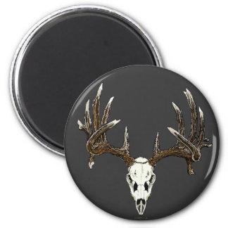 Whitetail deer skull 1 magnet