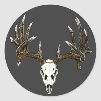 Whitetail deer skull 1 round sticker