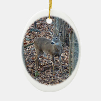 Whitetail Deer Spike Buck Christmas Ornament
