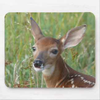 Whitetail fawn mouse pad