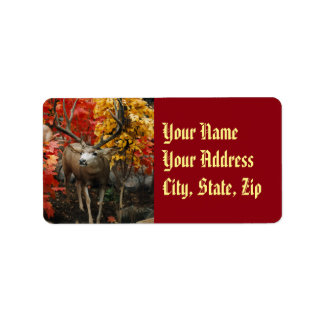 Whitetail In Autumn Address Label
