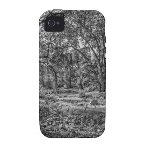 Whitney Valley Oaks iPhone 4 Covers