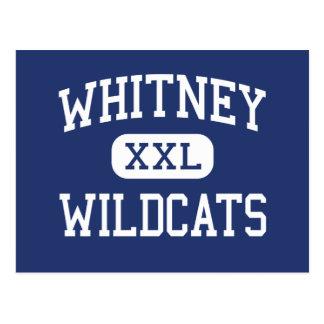 Whitney - Wildcats - High School - Whitney Texas Postcard
