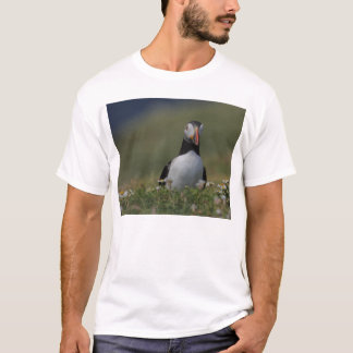 Who Are You Puffin T-Shirt