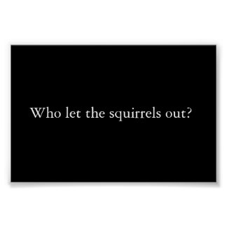 Who let the squirrels out? poster