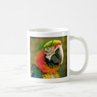 Who's a pretty boy then mug