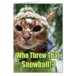 Who Threw That Snowball!? Stationery Note Card