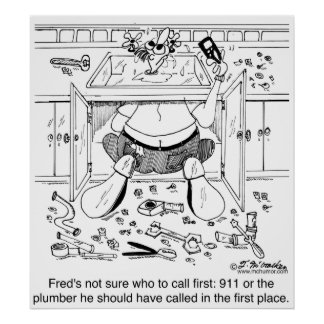 Who To Call 1st: 911 or a Plumber Poster