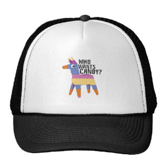 Who Wants Candy Mesh Hat
