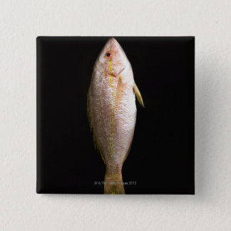 Whole Sea Bass 15 Cm Square Badge