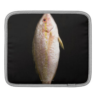 Whole Sea Bass iPad Sleeve