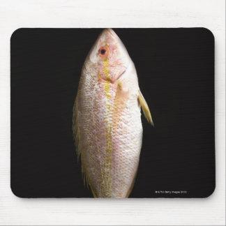 Whole Sea Bass Mouse Mat