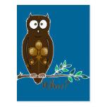 Whoo? Owl Postcard