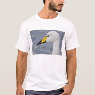 Whooper Swan at a pond in Reykjavik, Iceland. T-Shirt