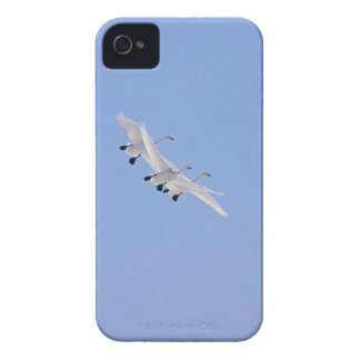 Whooper Swans flying in the sky Case-Mate iPhone 4 Case