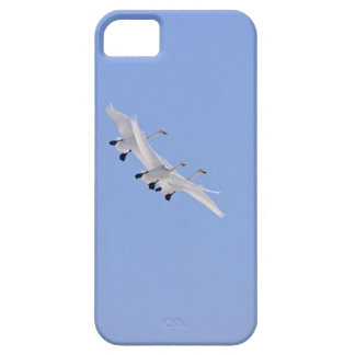 Whooper Swans flying in the sky iPhone 5 Cases