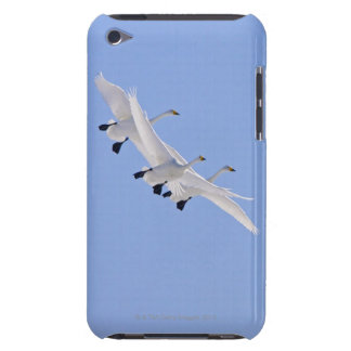 Whooper Swans flying in the sky iPod Case-Mate Cases