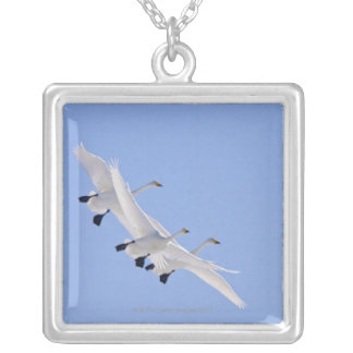 Whooper Swans flying in the sky Silver Plated Necklace