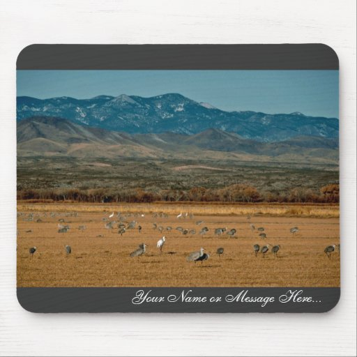 Whooping and Sandhill Cranes Mouse Pads