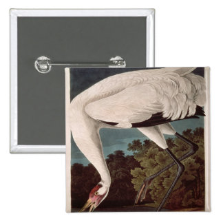 Whooping Crane, from 'Birds of America' 15 Cm Square Badge