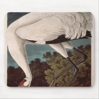 Whooping Crane, from 'Birds of America' Mouse Mat