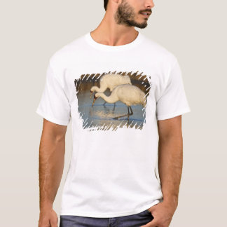 Whooping Crane wintering T-Shirt