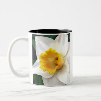Whte Daffodil with Yellow Center Two-Tone Coffee Mug