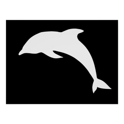 Whtie Dolphin Silhouette Posters